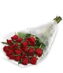 rosas envueltas