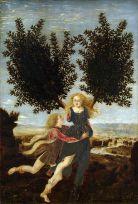 Antonio del Pollaiolo Apolo y Dafne