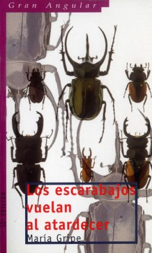 Portada tapa banda María Gripe Los escarabajos vuelan al atardecer